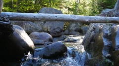 Small water rapids flowing through many rocks Stock Footage