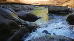 Small rapids with many rocks and a log on top - stock footage