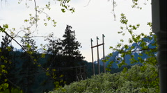 Time Lapse: Orchard * Powerlines Stock Footage