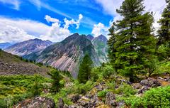 Fantastic landscape in Siberian mountains Stock Photos