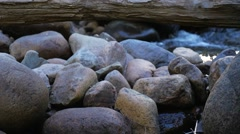 Rocks with log on top and small rapids behind Stock Footage