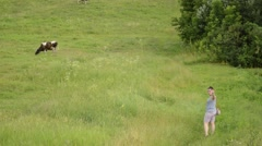 Girl goes on a field where cows graze. Stock Footage