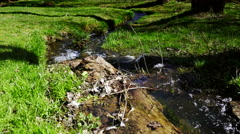 Stedycam walk over stream of pure fresh water Stock Footage