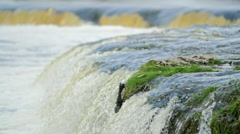 Close-up of waterfall during spring floods Stock Footage