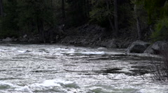 Canyon River Flowing With Spring Run Off - stock footage