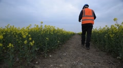 An official man with hi visibility vest and hard hat inspects crops for crop dam - stock footage