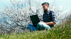 Man with a beard uses laptop on nature near blossoming tree Stock Footage