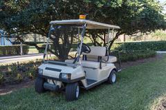 Golf Buggy - stock photo
