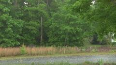 Summer Thunder Storm In Neighborhood Stock Footage