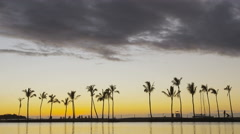 Beach sunset or sunrise with tropical palm trees - colorful sky Stock Footage