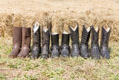 Crocodile cowboy leather boots Stock Photos