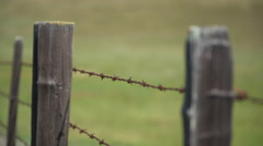 Shallow DOF pan shot of an old barbed wire fence - stock footage