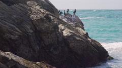 A few cormorants on the rocks near Spooner's Cove Beach Stock Footage