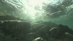 Sunbeams penetrate underwater spectacular and illuminated in slow motion Stock Footage