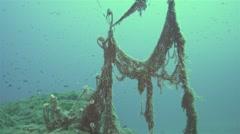 Fish swim around sunken fishing net on the bottom of sea.mp4 Stock Footage