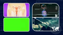 Vagina - Analysis in software - examination - background blue 01 - stock footage