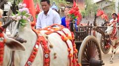 Decorated buffalo and local people in Bagan, Myanmar, Burma Stock Footage