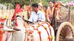 Decorated buffalo and local people in Bagan, Myanmar, Burma Stock Footage