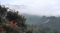 India Foggy Hillside Stock Footage