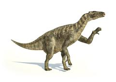 Iguanodon Dinosaur photorealistic representation, in dynamic posture. - stock illustration