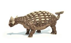 Ankylosaurus Dinosaur photorealistic representation. Dynamic posture. Stock Illustration