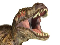 Tyrannosaurus Rex dinosaur, photorealistic representation. Head close up. - stock illustration