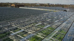 Flight over the industrial agricultural greenhouses Stock Footage