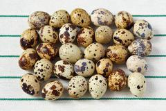 Several small yellow quail eggs lie on a towel - stock photo