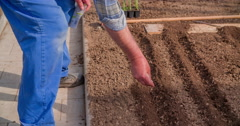 Planting seeds on a garden bed Stock Footage