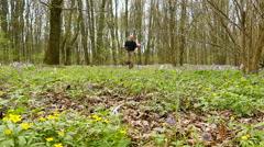Slow motion at 100 FPS. Adult Man hiker Traveler go  on  green spring forest  Stock Footage