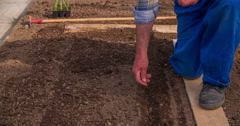 A man is slowly inserting seeds into a soil Stock Footage