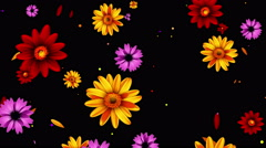 Falling multicolored flowers Stock Footage