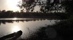 Scenic Murray River at Dawn in Australia Stock Footage