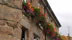Flowers on building Stock Footage