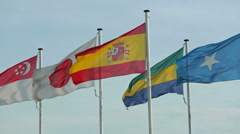 Waving International Flags Stock Footage