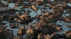 Beaten Earthen Road Flooded With Water View From the Bottom up Stock Footage