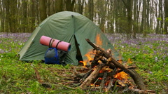 Slow motion  . BonFire, campfire and tourist tent camping Stock Footage