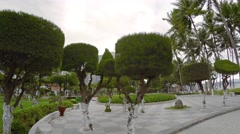 Oceanfront park with precisely trimmed topiaries in Nha Trang. Stock Footage