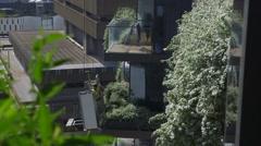 Living wall - green wall - vertical garden maintenance - MS Stock Footage