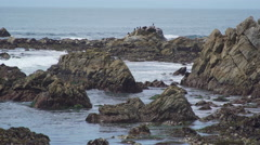 Scene from dramatic coast along historic  Stock Footage