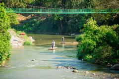 Bamboo rafting on river in jungle, Chiang Mai - Thailand Stock Photos