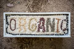 Ancient grains and healthy organic edible seeds Stock Photos