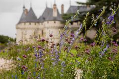 Chaumont on Loire castle Chaumont castle in France - stock photo
