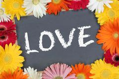 Love loving greeting card garden with colorful flowers flower board - stock photo
