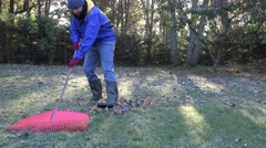 Young man tidying autumn leaves in garden. 4K Stock Footage