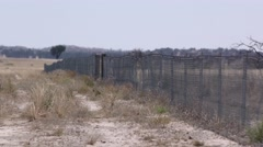 Rabbit-proof Fence Exclosure in Australia Stock Footage