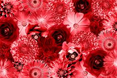 Vintage red flowers collage high contrasted background - stock photo