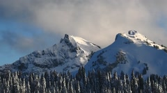 Pristine Snow Covers the Evergreens on Mount Rainier Stock Footage