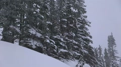 Snow Falling Hard on Mountainside Evergreens Stock Footage