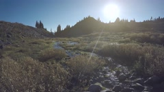 Babbling Mountainside Brook on a Sunny Day Stock Footage